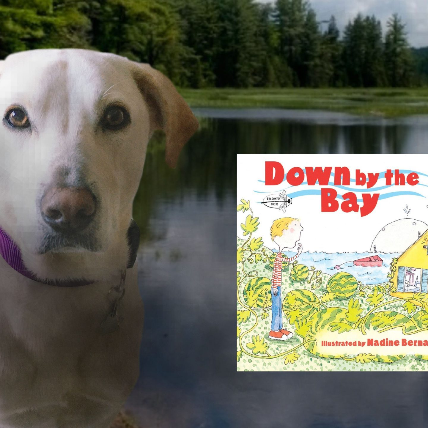 Storytime: Down By The Bay