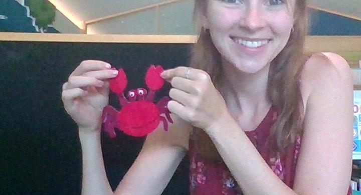 Little Crabs Felt Story with Stephanie