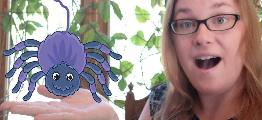 Rhyme Time: Itsy Bitsy Spider with Laura