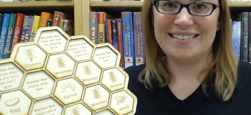 Person holding honeycomb shape